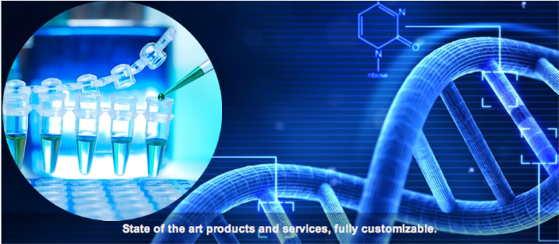 Reliable customized molecular biology services